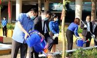 Celebran en Vietnam animadas actividades en respuesta al Mes de la Juventud y a la campaña de plantación de árboles