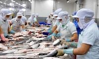 Estados Unidos anuncia resultados de revisión antidumping de pescados sin escamas de Vietnam