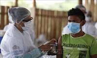 Cámara Baja de Brasil aprueba proyecto de ley que permite la cancelación de derechos de autor de vacunas