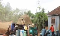 Cambios en la comuna de Ha Bau