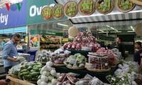 สร้างส่วนแบ่งที่มั่นคงให้แก่ผลไม้เวียดนามในตลาดโลก