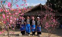 ความคึกคักของงานเทศกาลการโยนลูกช่วงในโอกาสปีใหม่ในเขตพื้นที่แม่น้ำด่าตอนบน