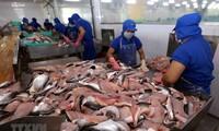 ภาษีต่อต้านการขายทุ่มตลาดสำหรับปลาสวายและปลาบาซาของเวียดนามที่ส่งออกไปยังสหรัฐลดลง