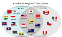 ซีพีทีพีพีและอาร์ซีอีพีช่วยรวมตัวเศรษฐกิจเอเชีย