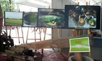 ผลักดันการประหยัดพลังงานและใช้พลังงานทดแทนในหมู่บ้านศิลปาชีพ
