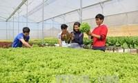 รัสเซียพร้อมขยายความร่วมมือด้านการเกษตรกับเวียดนามและอาเซียน