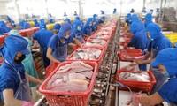 การส่งออกสินค้าเกษตร ป่าไม้ และสัตว์น้ำของเวียดนามเพิ่มขึ้นเกือบร้อยละ 27ใน 7 เดือนที่ผ่านมา