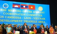 Boosting cooperation in Development Triangle Area
