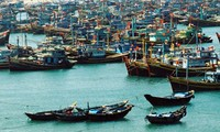 Cooperation helps Vietnam adapt to climate change