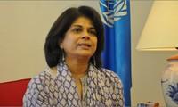 Joint efforts retain Vietnam's vanguard in UN reshuffle