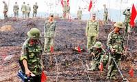 Vietnam, US together clean up unexploded ordnances