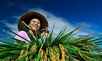 Farmers sent abroad for study
