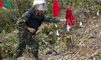 Vietnam, Australia deal with bombs and mines