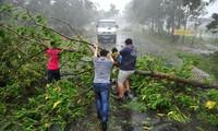 Overcoming typhoon Rammasun's aftermaths