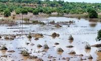 Vietnam donates 200,000 USD to Mozambican flood victims