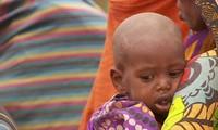 UN: Millions face hunger in Ethiopia