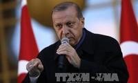 Ankara dismisses OSCE monitors' criticism on referendum