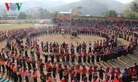 Spring festivities enchant Vietnamese people nationwide