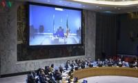 Vietnamese Ambassador presides over UNSC meeting on Mali