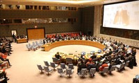 Vietnam shares experience at UN social development commission session
