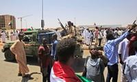 Vietnam contributes to Sudan's transition