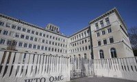 WTO sees global trade down 13% due to pandemic