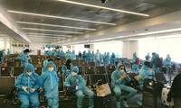 Vietnamese citizens repatriated from Japan