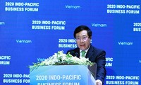 Important deals adopted at Indo-Pacific Business Forum 2020