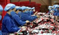 Singaporean newspapers: EVFTA helps buffer economic downturn impact