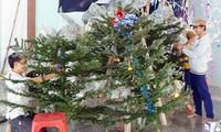 Die Katholiken in Vietnam feiern das Weihnachtsfest 2012