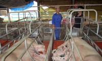 Gemeinde Chieng Xom trägt zur Neugestaltung ländlicher Räume bei