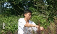 Der Arzt der Insel Tho Chu
