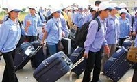 Gute Signale des Arbeitsmarkts im Ausland für Vietnamesen