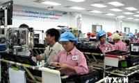 Handelszusammenarbeit zwischen Vietnam und Brasilien entwickelt sich rasant