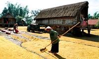 Start eines Projekts zur Armutsminderung in Tay Nguyen
