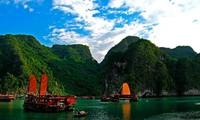 Seminar zur Erhaltung des Weltnaturschatzes Ha Long-Bucht