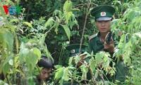 Verbrechen im Grenzgebiet stärker bekämpfen