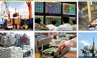 Förderung des privaten Wirtschaftssektors: Verstärkung der Innenkraft der Wirtschaft