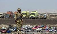 Flugzeugabsturz in Ägypten: 58 Leichen wurden identifiziert