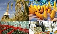 Exportmarkt für Landwirtschaftsprodukte wächst