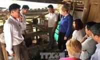 Irland unterstützt besonders arme Gebiete in Ha Giang