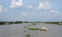 Weltbank hilft Vietnam bei der Anpassung an den Klimawandel