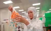Erste sechs Monate: Ausländische Direktinvestitionen in Vietnam erhöhen sich stark