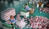 Export Südkoreas nach Vietnam steigt stark