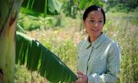 Vietnamesische Filme faszinieren tschechische Zuschauer