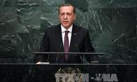 Bedingungen der Türkei bei der Teilnahme an dem Kampf gegen IS-Milizen mit USA