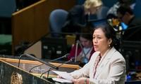 Vietnam appelliert an internationale Gemeinschaft, eine friedliche und sichere Welt aufzubauen