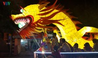 Die Einzigartigkeit des Festes Thanh Tuyen 2017