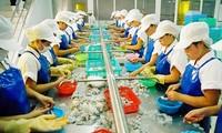 Arbeitsgruppe der EC tagt mit Vietnam über die Abschaffung von gelber Karte gegenüber der Fischerei