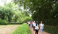 Die im Ausland lebenden vietnamesischen Jugendlichen besuchten die Heimat von Präsident Ho Chi Minh